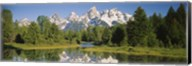 Reflection of a snowcapped mountain in water, Near Schwabachers Landing, Grand Teton National Park, Wyoming, USA Fine-Art Print