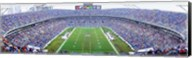 NFL Football, Ericsson Stadium, Charlotte, North Carolina, USA Fine-Art Print