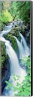 Sol Duc Falls Olympic National Park WA Fine-Art Print