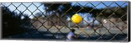 Close-up of a tennis ball stuck in a fence, San Francisco, California, USA Fine-Art Print