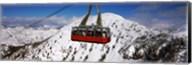 Overhead cable car in a ski resort, Snowbird Ski Resort, Utah Fine-Art Print