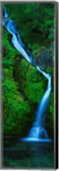 Waterfall in a forest, Sullivan Falls, Opal Creek Wilderness, Oregon, USA Fine-Art Print