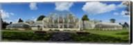 The Curvilinear Glass House, The National Botanic Gardens, Dublin City, Ireland Fine-Art Print