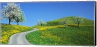Winding Road Canton Switzerland Fine-Art Print