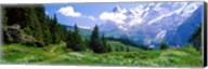 Alpine Scene Near Murren Switzerland Fine-Art Print