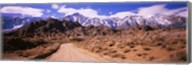 Dirt road passing through an arid landscape, Lone Pine, Californian Sierra Nevada, California, USA Fine-Art Print