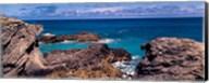 Rock formations on the coast, Bermuda Fine-Art Print