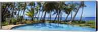Palm Trees in Maui, Hawaii (horizontal) Fine-Art Print