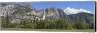 Panoramic view of Yosemite Falls and the Yosemite meadow in late spring, Yosemite National Park, California, USA Fine-Art Print