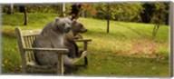 Bears sitting on a bench Fine-Art Print