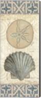Beach Treasures II Fine-Art Print
