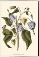 Lavender Floral I Fine-Art Print