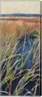 Pastel Wetlands I Fine-Art Print