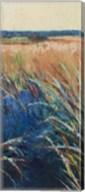 Pastel Wetlands II Fine-Art Print