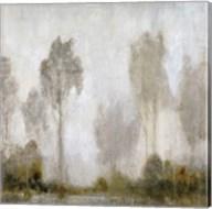 Misty Marsh I Fine-Art Print