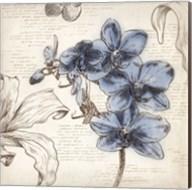 Blushing Blue II - Mini Fine-Art Print
