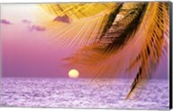 Stylized tropical scene with violet sea, pink sky, setting sun and palm fronds Fine-Art Print