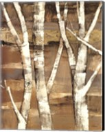 Wandering Through the Birches I Fine-Art Print