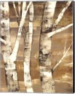 Wandering Through the Birches II Fine-Art Print