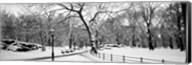 Central Park in Snow Fine-Art Print