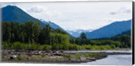 Trees in front of mountains in Quinault Rainforest, Olympic National Park, Washington State, USA Fine-Art Print
