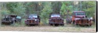 Old rusty cars and trucks on Route 319, Crawfordville, Wakulla County, Florida, USA Fine-Art Print
