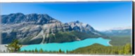 Peyto Lake at Banff National Park, Alberta, Canada Fine-Art Print