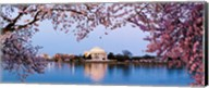 Cherry Blossom tree with a memorial in the background, Jefferson Memorial, Washington DC, USA Fine-Art Print