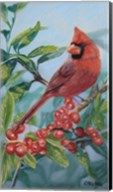 Cardinal And Berries Fine-Art Print