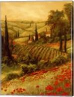 Toscano Valley II Fine-Art Print