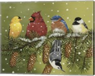 Snowy Feathered Friends Fine-Art Print