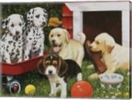 Puppy Playmates Fine-Art Print