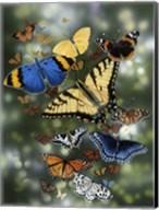 Flying Flowers Fine-Art Print