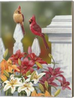 Lilies And Cardinals Fine-Art Print