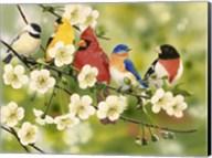 Songbirds On a Flowering Branch Fine-Art Print