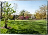 Sherwood Gardens, Baltimore Fine-Art Print