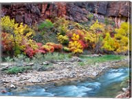 Virgin River and rock face at Big Bend, Zion National Park, Springdale, Utah, USA Fine-Art Print