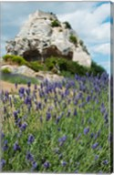 Lavender field in front of ruins of fortress on a rock, Les Baux-de-Provence, Provence-Alpes-Cote d'Azur, France Fine-Art Print