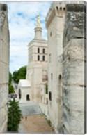 Church in a city, Cathedrale Notre-Dame des Doms d'Avignon, Palais des Papes, Provence-Alpes-Cote d'Azur, France Fine-Art Print