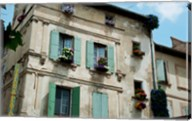 View of an old building with flower pots on each window, Rue Des Arenes, Arles, Provence-Alpes-Cote d'Azur, France Fine-Art Print