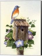 Bluebird III Fine-Art Print