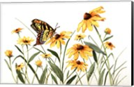 Butterfly & Black Eyed Susans Fine-Art Print