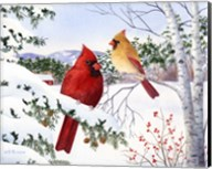 Cardinals And Hemlock Tree Fine-Art Print