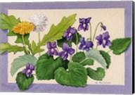 Dandelion And Violets Fine-Art Print