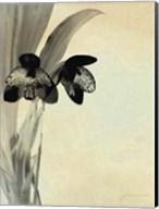 Orchid Blush Panels I Fine-Art Print