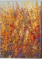 High Desert Blossoms I Fine-Art Print