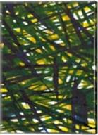 Green Thicket I Fine-Art Print