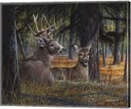 Autumn Royalty Fine-Art Print