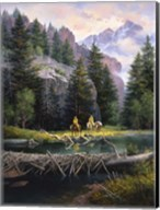 Cure of the Rockies Fine-Art Print