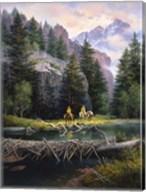 Cure of the Rockies Fine-Art Print